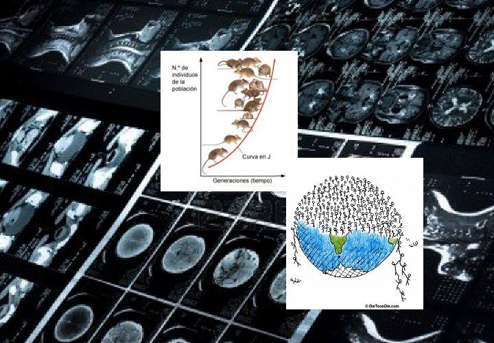 biomedmat